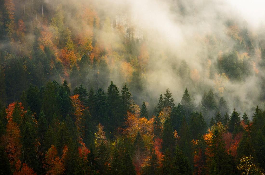 Autumn Alps Alpen Krün Karwendel Wetterstein Herbstlaub Herbst