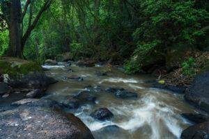 Ewaso Narok flowing