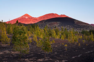 Teide at Sunset