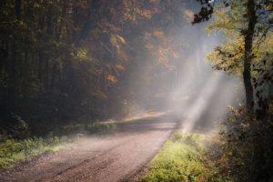 Autumn Haard Haltern